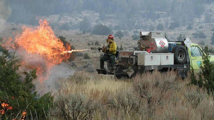 University Scientists Take Aim At Wildfires In Nv Firehouse